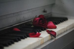 Image of old piano with rose petals